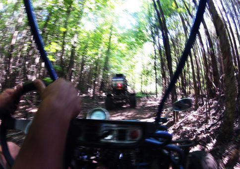 196) Drive a dune buggy