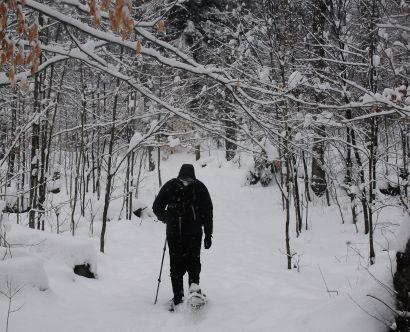 snowshoe_06