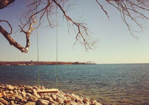 80) Make a tree-swing somewhere